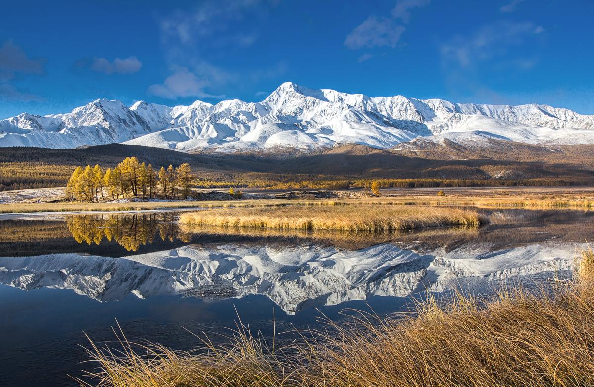 Осень на Алтае — это волшебные переливы желто-оранжевых оттенков, контрастирующие с сизой дымкой на горных вершинах, это плеск горных источников и напоминающий сахарную пудру первый снег...