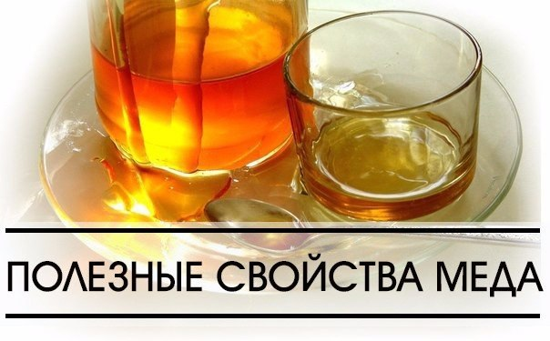 http://mtdata.ru/u24/photoFB77/20554511856-0/original.jpg