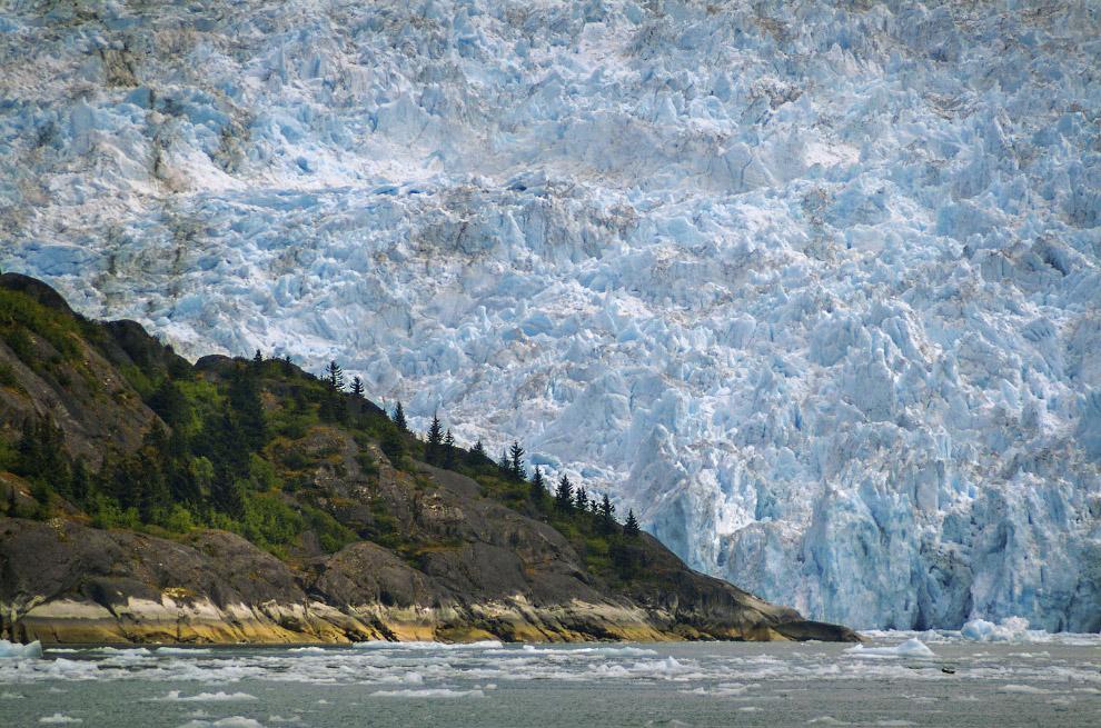 Ледник LeConte