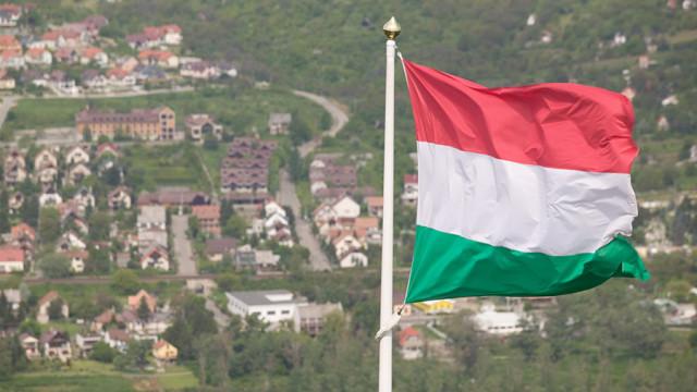 В Верховной раде рассказали, кто на самом деле отдал власть венграм в Закарпатье