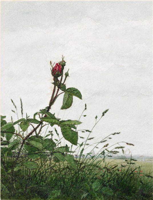 «Цветы последние милей…» Французский художник Léon Bonvin (1834 – 1866)