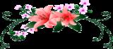 Фестиваль цветов Bloemencorso в Голландии!