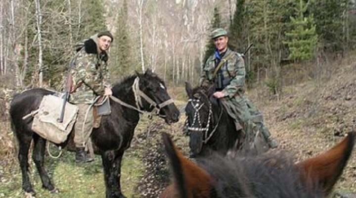 Про охоту верхом на лошади
