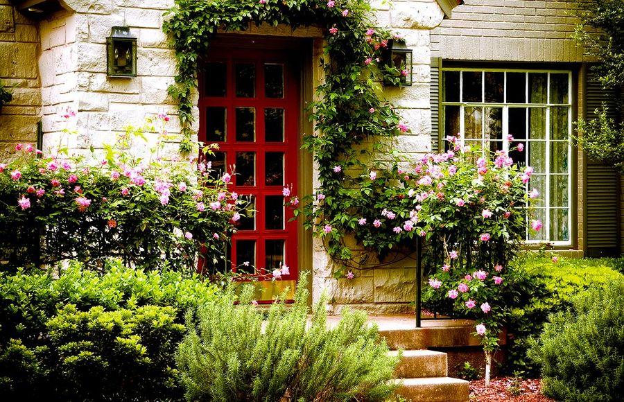 Цветы у дверей