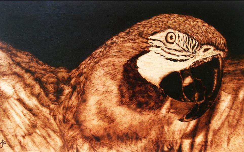 Julie Bender 1 Потрясающие картины, выжженные на кленовых дощечках