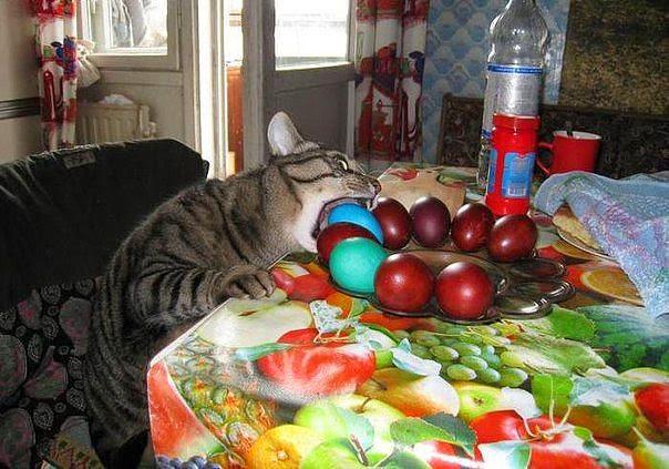 """""""Прихожу на кухню, а там....""""))) Всех с праздником Светлой Пасхи!"""