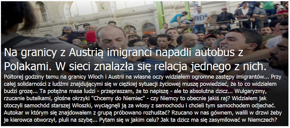 Польский турист: «Я видел огромные полчища мигрантов»