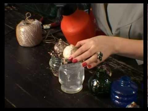 Ботаника. Как вырастить гиацинт дома?