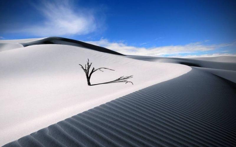 Белые пески, Нью-Мексико, США природа, пустыня