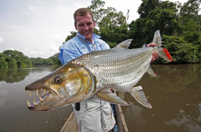 как ловят самых крупных рыб мира