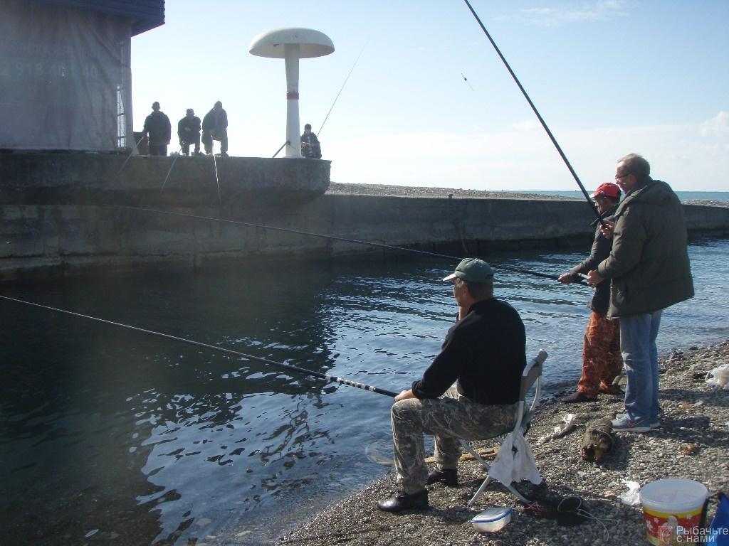 рыбалка в боровичах