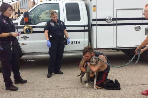 Была такая история: Бездомный рискнул собственной жизнью ради любимой собаки