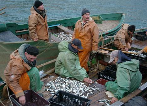 Российские рыбаки будут ловить хамсу у берегов Абхазии