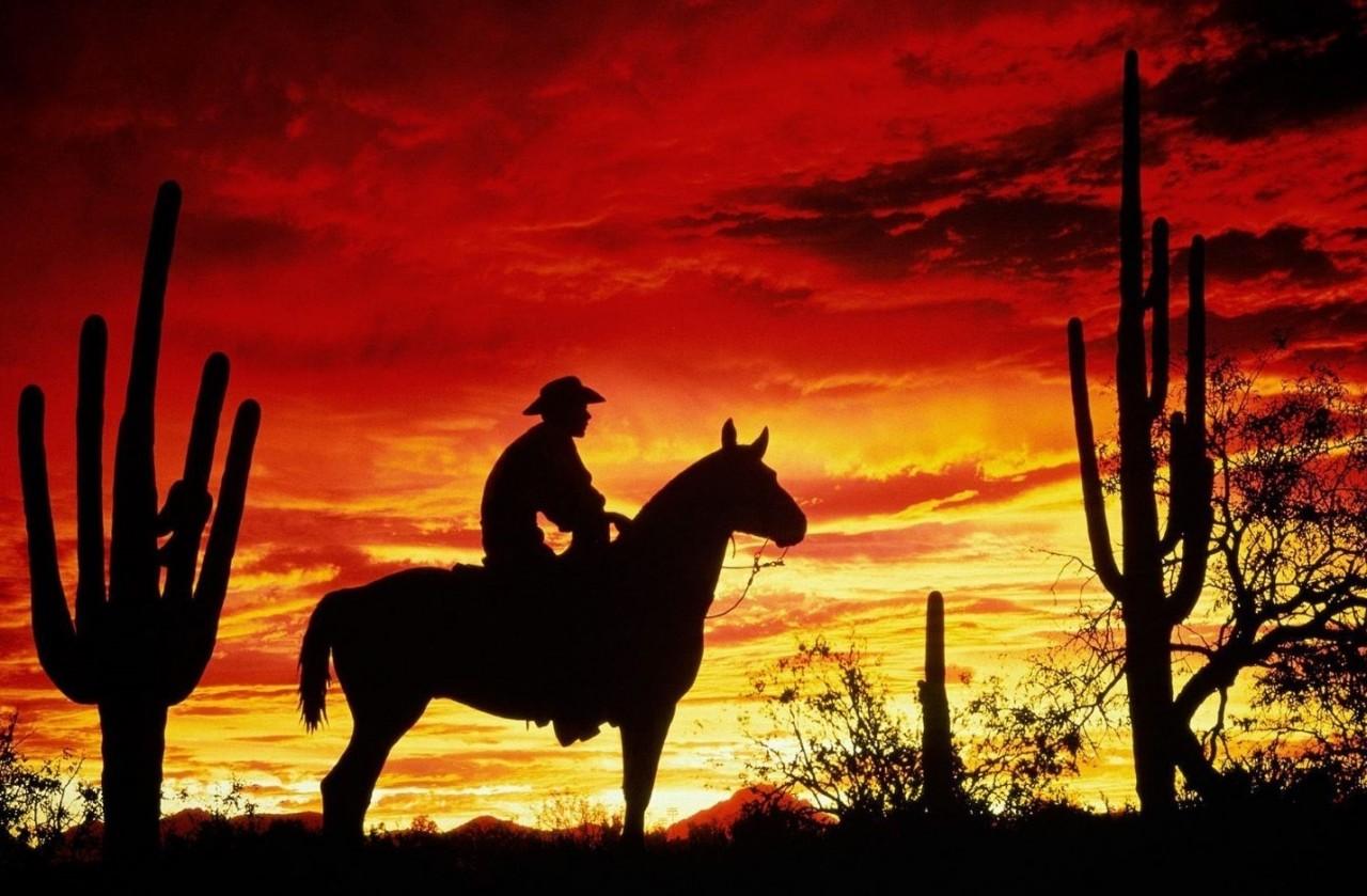 Такой «дикий» Запад: занесли меч – отрубили себе руки