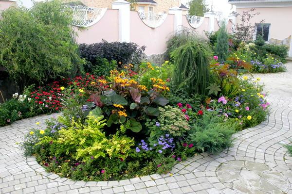 15 цветочных «спецэффектов», которые изменят ваш сад