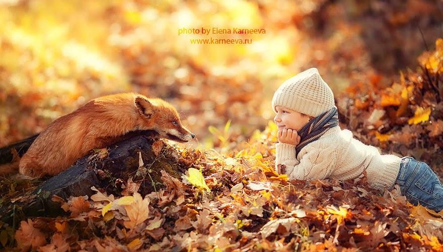 Дети и животные в запредельн…