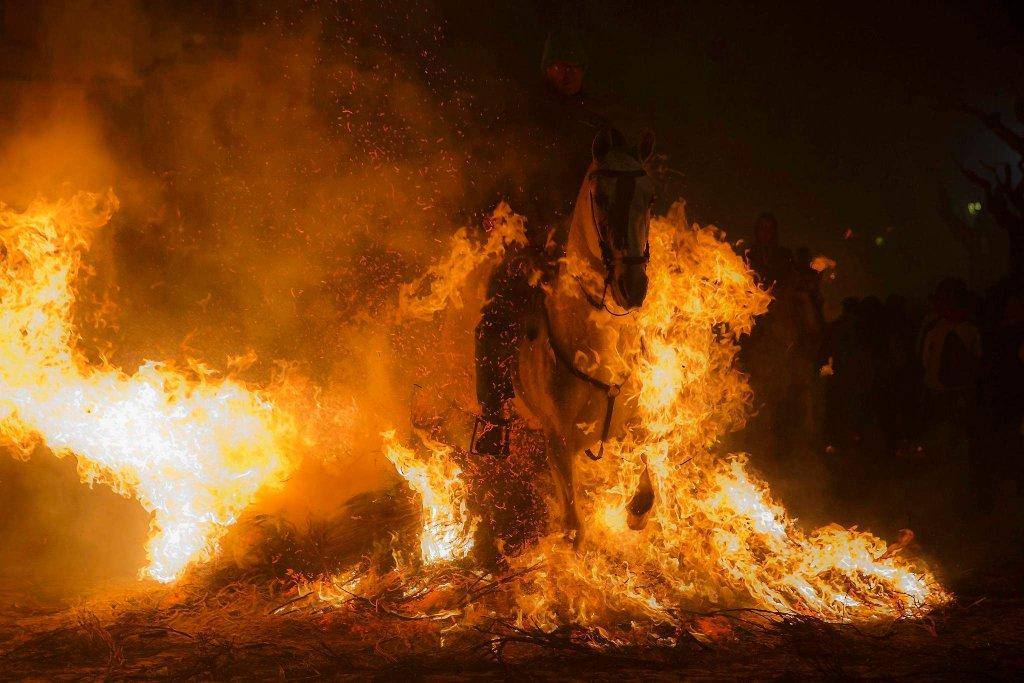 Luminarias - испанский фестиваль огня и животных-4