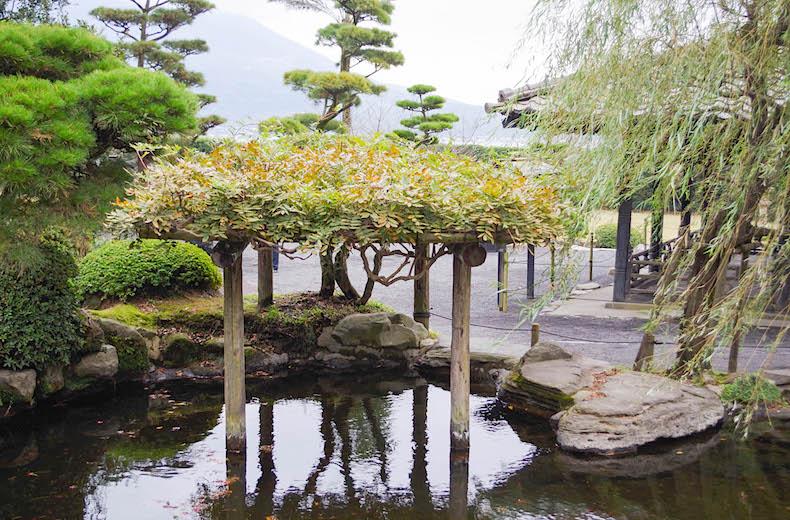 Япония: сады острова Кюсю