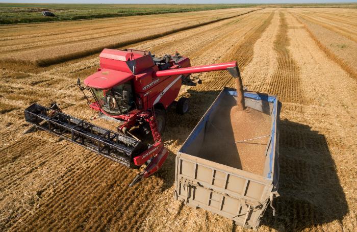 Регионы выступают за приостановку экспорта зерна. Ждать ли изменений?