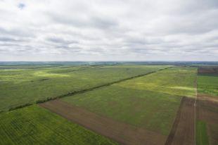 Что можно вырастить на дальневосточном гектаре?