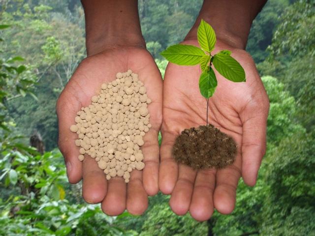 Действия удобрений на почву и растения - отрицательные и положительные