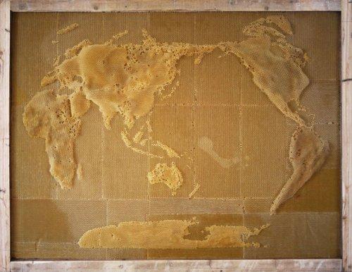 Произведения искусства из пчелиного воска (12 фото)