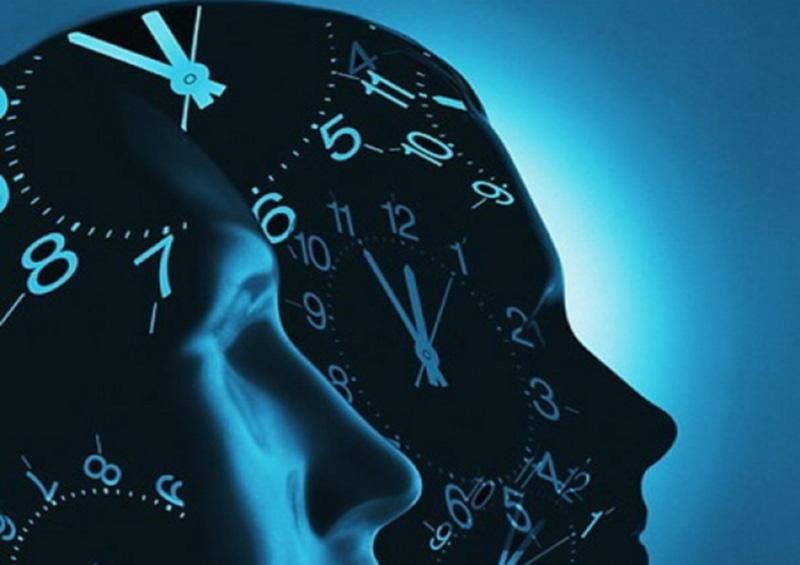 Как на мозг влияет время суток