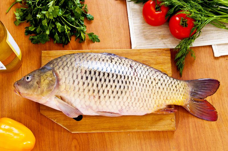 Вспоминая «рыбный день»