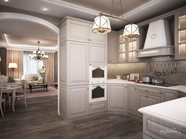 Кухня гостиная в частном доме: 70 удачных фото идей