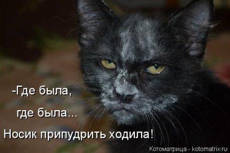 ������ �����, ����, ������ � ������������ )))