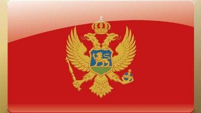Черногория закрыла въезд Дмитрию Рогозину