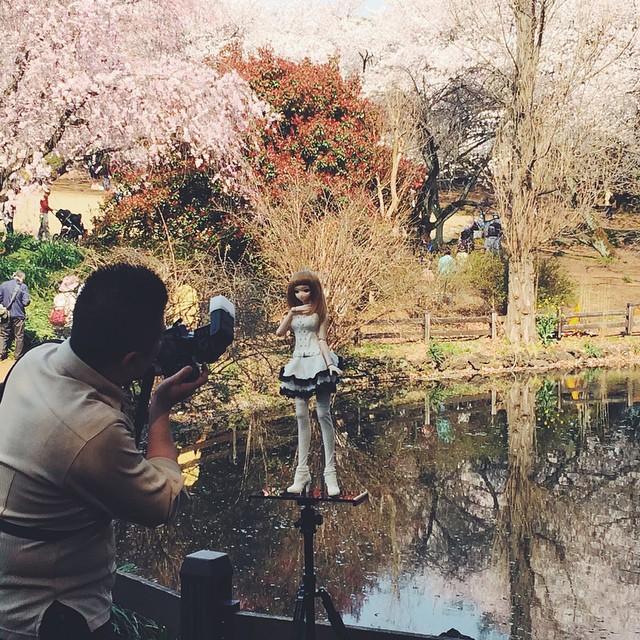 Япония, такая Япония! в мире, люди, прикол, япония