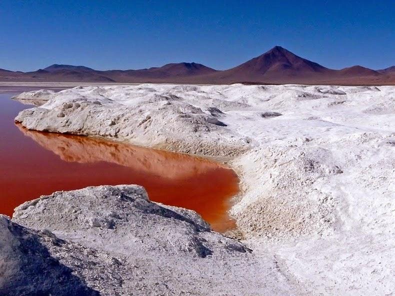 LagunaColorada11 Кровавая лагуна в Боливии