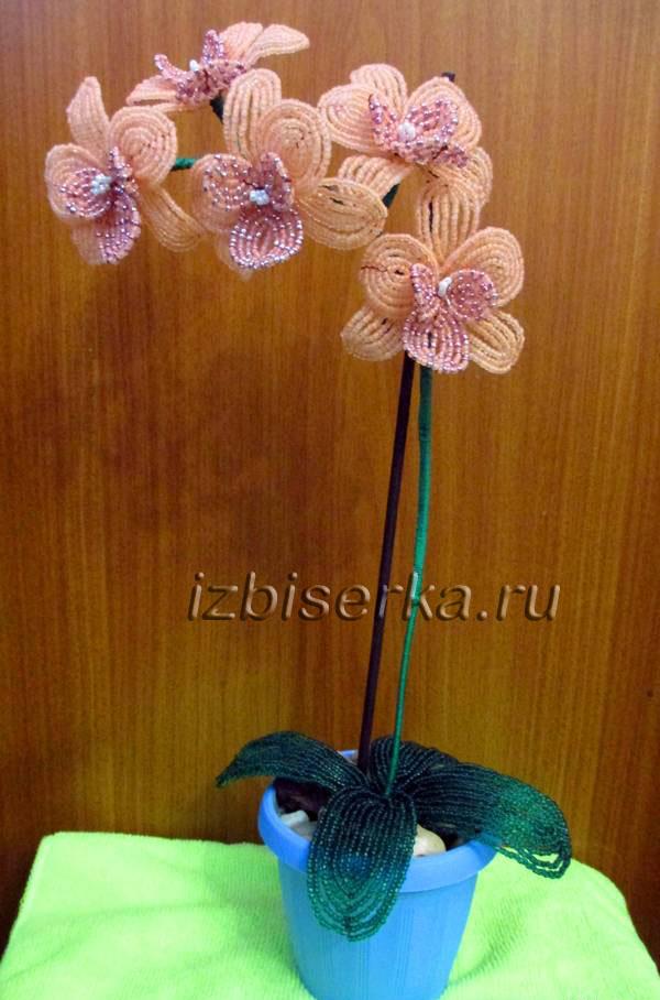 Цветы орхидея из бисера мастер класс с пошаговым фото