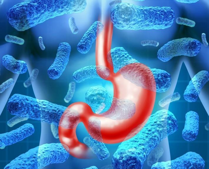 Микробное ожирение
