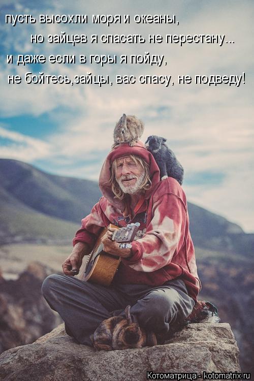 Котоматрица: пусть высохли моря и океаны, но зайцев я спасать не перестану... и даже если в горы я пойду, не бойтесь,зайцы, вас спасу, не подведу!