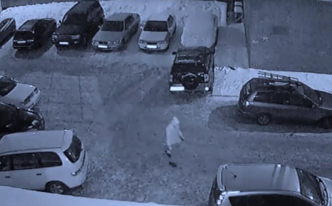 Изуродовавший 40 авто за ночь иркутянин попал на видео