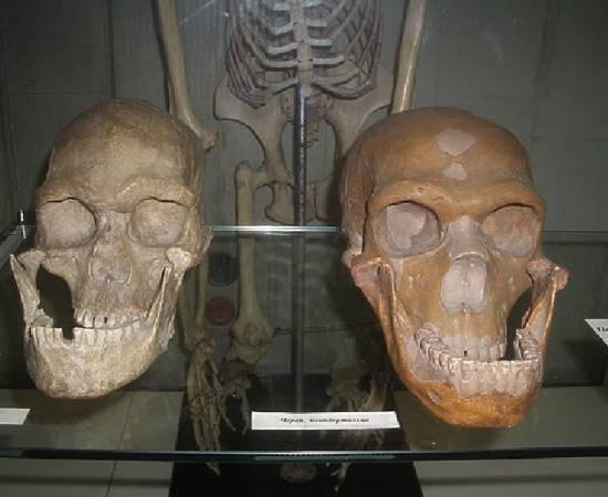 Израиль. Сенсационная находка в пещере перепишет историю человечества?