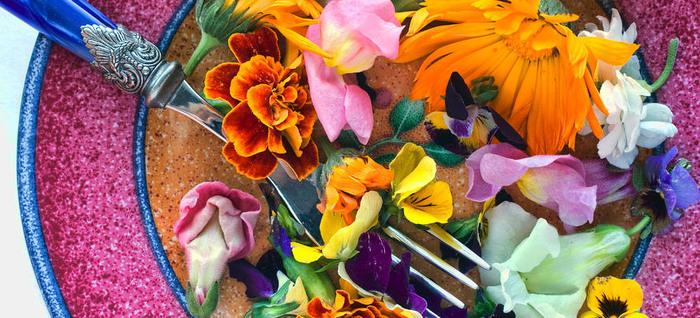 Съедобные и вкусные цветы