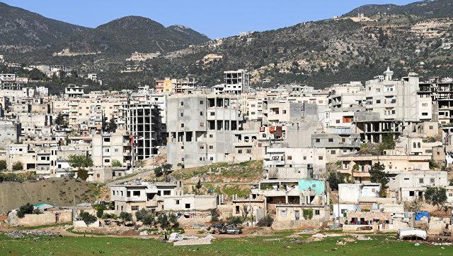 Новости Сирии. Сегодня 29 декабря 2017