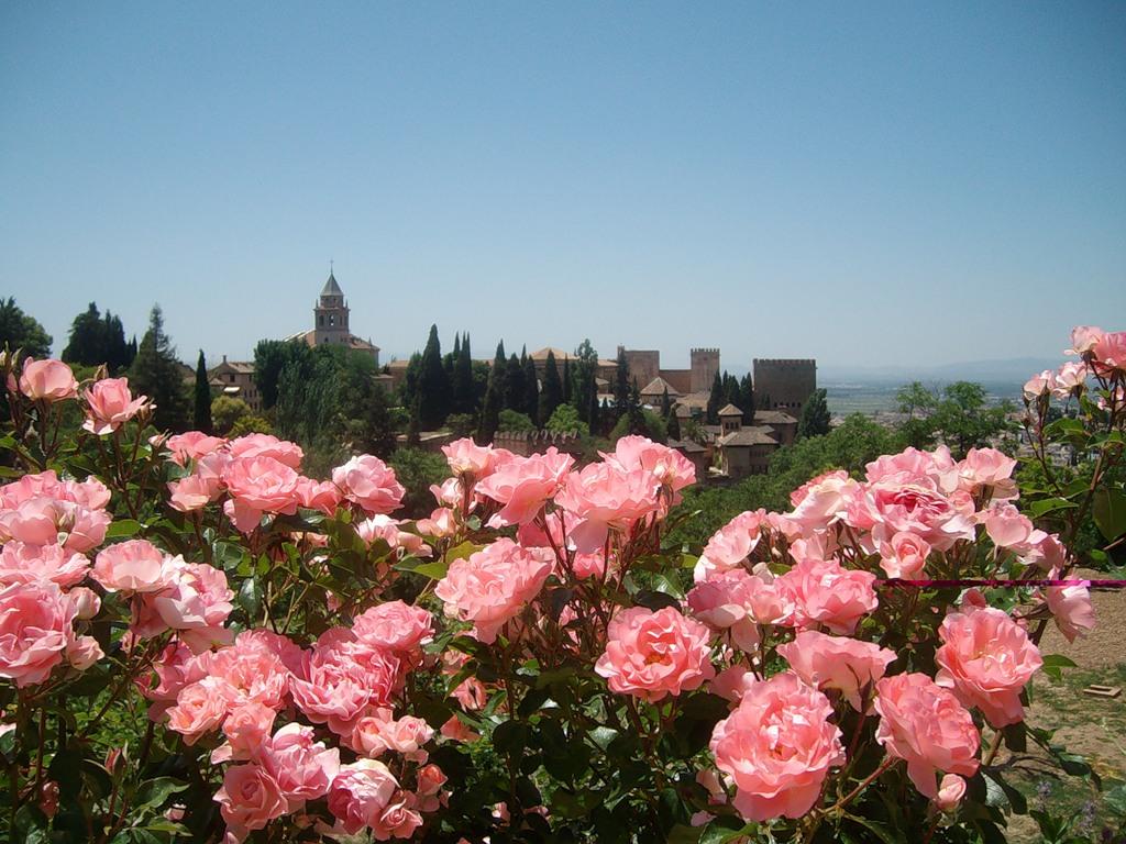 Сады Альгамбры - парковый ансамбль Испании