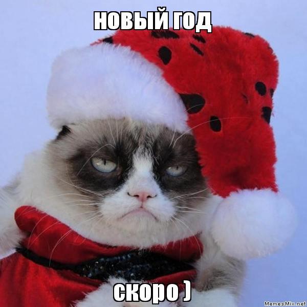 ЛДПР хочет сократить новогодние праздники до одного дня