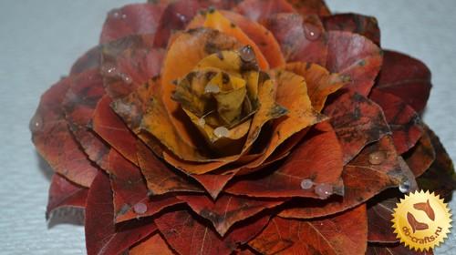 Цветы из природного материала главная