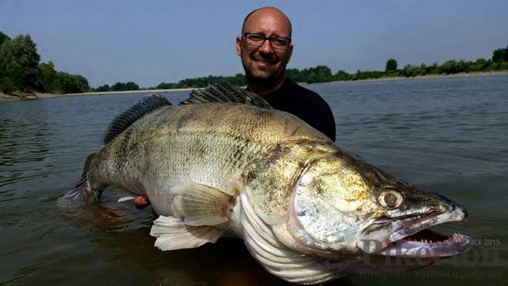 рыбаки выловили в первый день 204 кг рыбы
