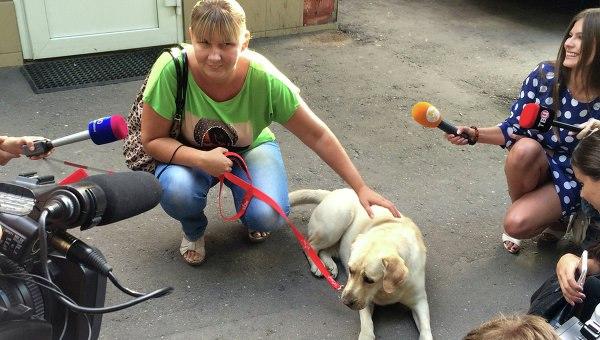 Украденную в Москве собаку-поводыря вернули хозяйке.