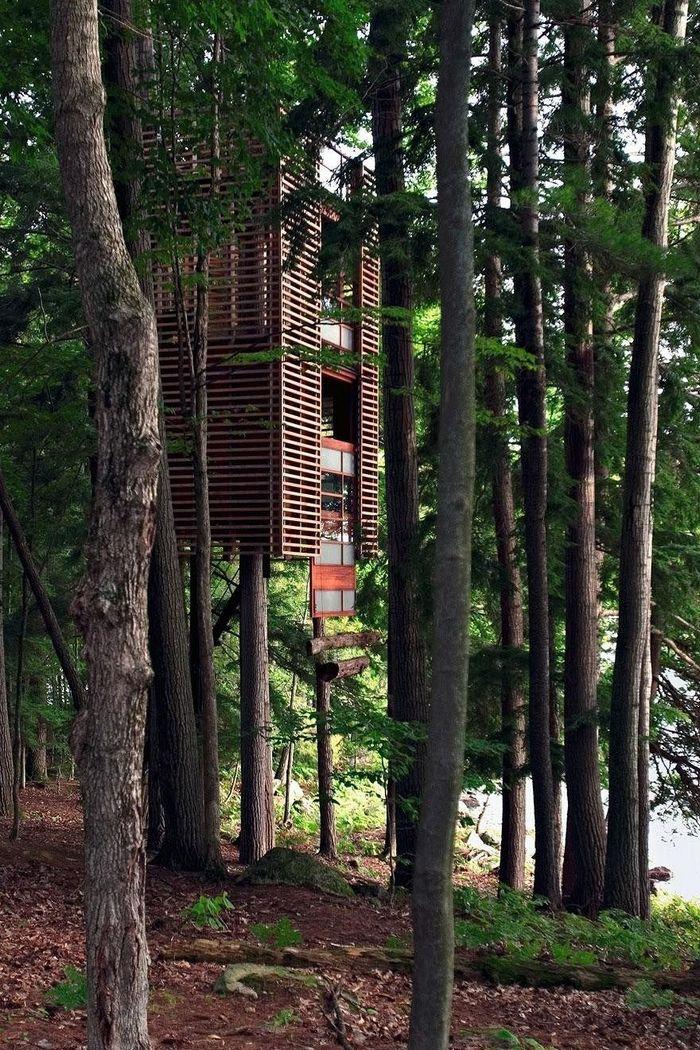 Экологические и комфортные дома на деревьях