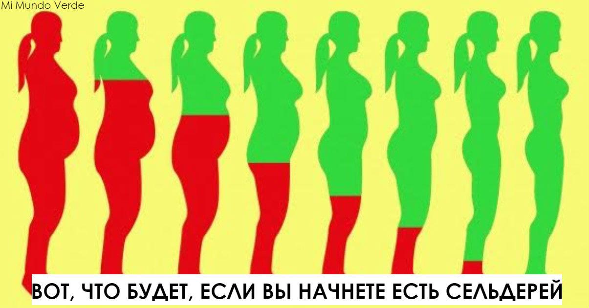Вот что будет с вашим телом, если вы начнете есть сельдерей хотя бы неделю