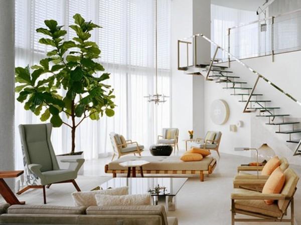 крупное растение в современном интерьере светлой гостиной