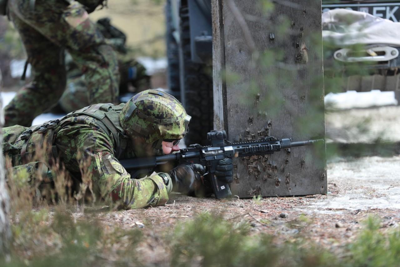 Эстония выбрала автоматические винтовки американской компании Lewis Machine & Tool Company