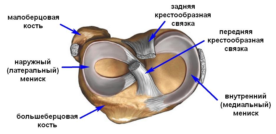 Как лечить разрыв заднего рога внутреннего мениска